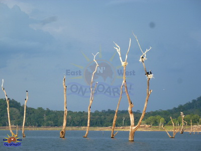 19b - Focus on the Eastern Province! - East N' West on Board! - Tours in Sri Lanka
