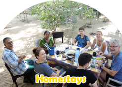 homestays